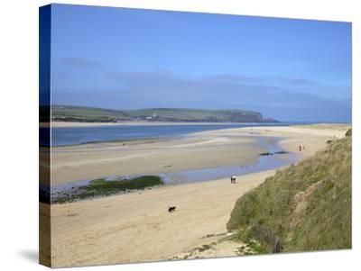 Visitors and Tourists Walking Dogs on Beach at Camel Estuary Near Rock, North Cornwall, England, Uk-Peter Barritt-Stretched Canvas Print