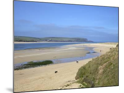 Visitors and Tourists Walking Dogs on Beach at Camel Estuary Near Rock, North Cornwall, England, Uk-Peter Barritt-Mounted Photographic Print