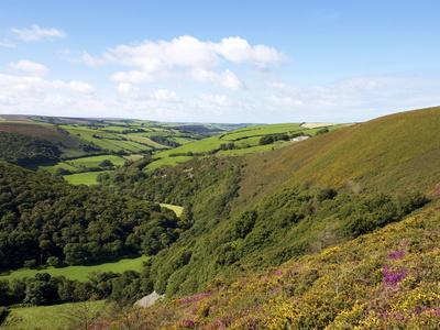 Exmoor From County Gate, Looking Towards Brendon, Exmoor National Park, Somerset, England, Uk-Jeremy Lightfoot-Framed Photographic Print