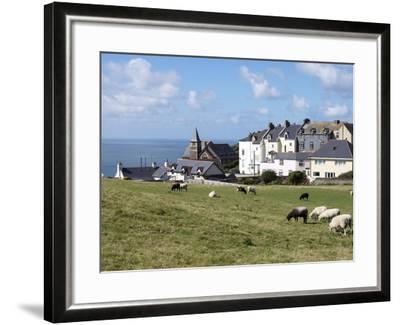 Grazing Sheep, Mortehoe, Devon, England, United Kingdom, Europe-Jeremy Lightfoot-Framed Photographic Print