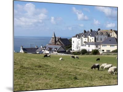 Grazing Sheep, Mortehoe, Devon, England, United Kingdom, Europe-Jeremy Lightfoot-Mounted Photographic Print