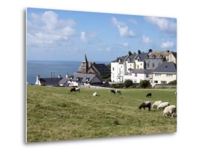 Grazing Sheep, Mortehoe, Devon, England, United Kingdom, Europe-Jeremy Lightfoot-Metal Print