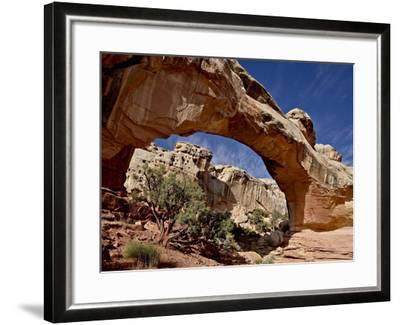 Hickman Bridge, Capitol Reef National Park, Utah, USA-James Hager-Framed Photographic Print