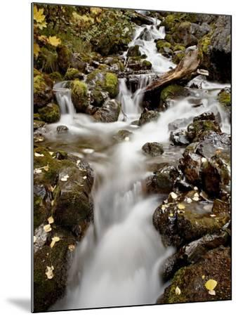 Cascade at Pioneer Falls, Alaska, United States of America, North America-James Hager-Mounted Photographic Print