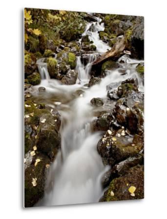Cascade at Pioneer Falls, Alaska, United States of America, North America-James Hager-Metal Print
