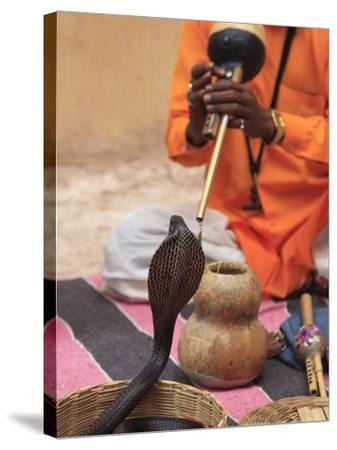 Snake Charmer, Rajasthan, India, Asia--Stretched Canvas Print