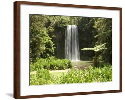 Millaa Millaa Falls, Atherton Tablelands, Queensland, Australia, Pacific--Framed Photographic Print