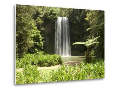 Millaa Millaa Falls, Atherton Tablelands, Queensland, Australia, Pacific--Metal Print
