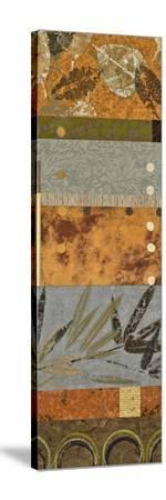 Organic Patterns I-Jeni Lee-Stretched Canvas Print