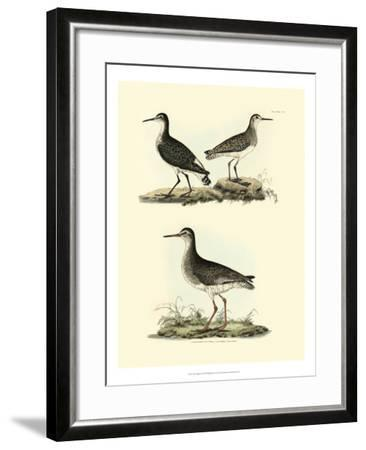 Selby Sandpipers II-John Selby-Framed Art Print