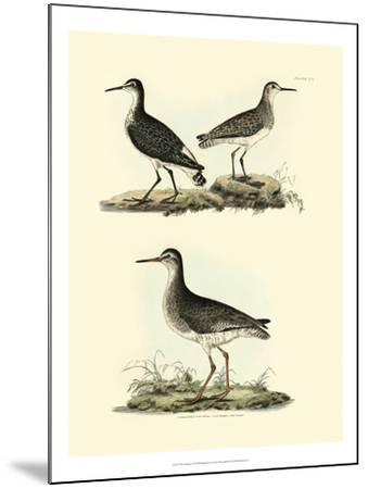 Selby Sandpipers II-John Selby-Mounted Art Print