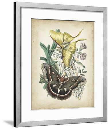 Fanciful Flight I-John Wiek-Framed Art Print