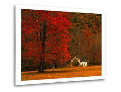 Farm House on a Autumn Morn'-Danny Head-Metal Print