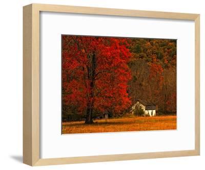 Farm House on a Autumn Morn'-Danny Head-Framed Art Print