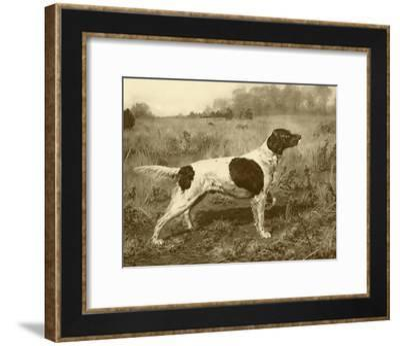 Rowdy Rod-J^M^ Tracey-Framed Art Print
