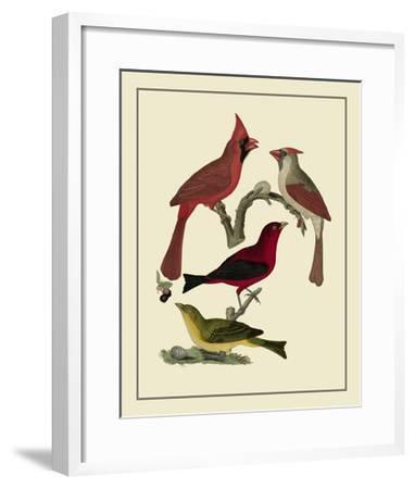 Bird Family IV-A^ Lawson-Framed Art Print