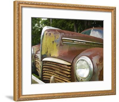 Rusty Hudson II-Danny Head-Framed Art Print
