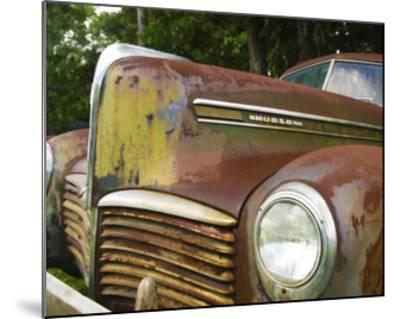Rusty Hudson II-Danny Head-Mounted Art Print