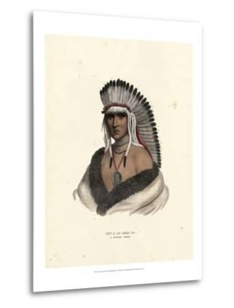 Pawnee Brave-McKenney & Hall-Metal Print