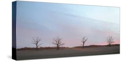 Sunrise-Alicia Ludwig-Stretched Canvas Print