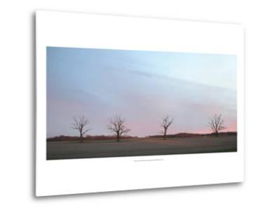 Sunrise-Alicia Ludwig-Metal Print