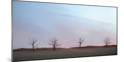 Sunrise-Alicia Ludwig-Mounted Art Print
