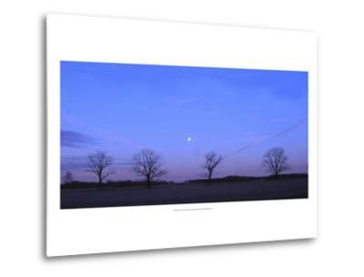 Moonrise-Alicia Ludwig-Metal Print