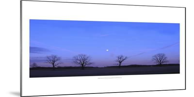 Moonrise-Alicia Ludwig-Mounted Art Print