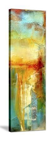 Urban Decay III-Erin Ashley-Stretched Canvas Print