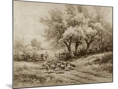 Herding Sheep-Carl Weber-Mounted Art Print