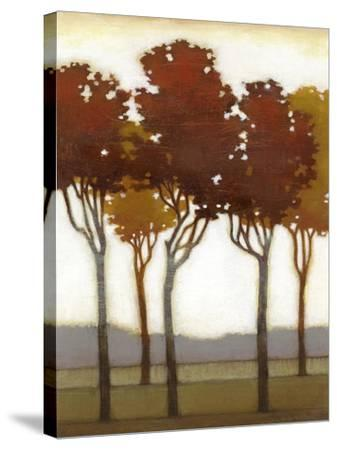 Arboreal Grove I-Norman Wyatt Jr^-Stretched Canvas Print