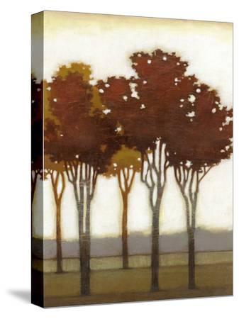 Arboreal Grove II-Norman Wyatt Jr^-Stretched Canvas Print