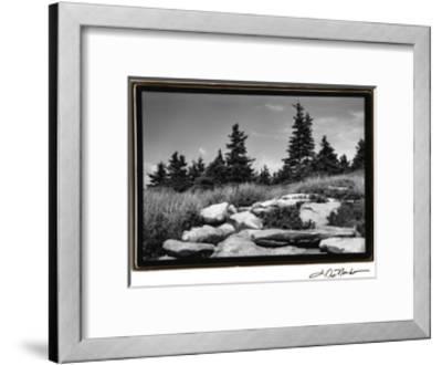 Rocky Green-Laura Denardo-Framed Art Print