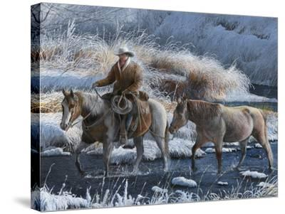 Heading Home-Kevin Daniel-Stretched Canvas Print