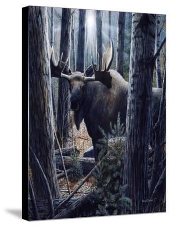 King of the Northwoods-Kevin Daniel-Stretched Canvas Print