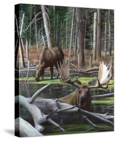 At River's Edge I-Kevin Daniel-Stretched Canvas Print