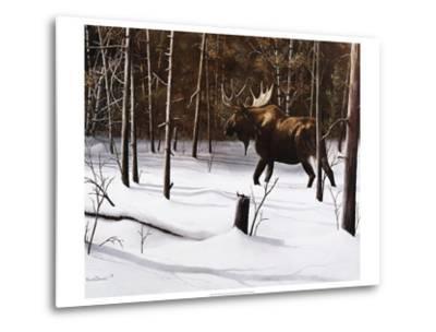 Winter Forage-Kevin Daniel-Metal Print
