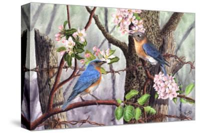 Bluebirds-Al Dornish-Stretched Canvas Print