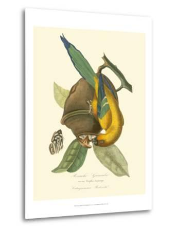 Nature Jardin IV-L. Curmer-Metal Print
