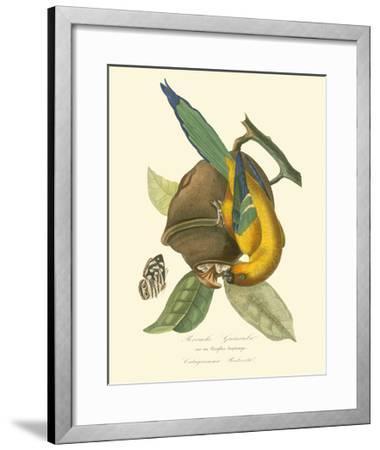 Nature Jardin IV-L. Curmer-Framed Art Print