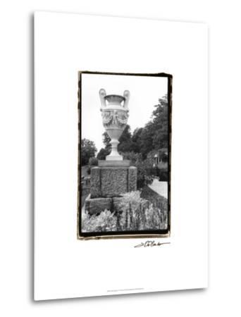 Garden Elegance V-Laura Denardo-Metal Print