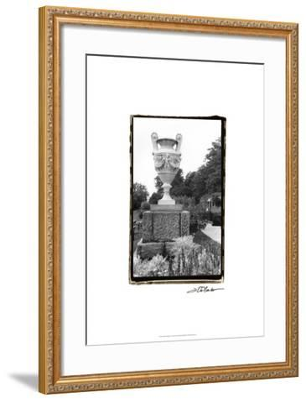 Garden Elegance V-Laura Denardo-Framed Art Print