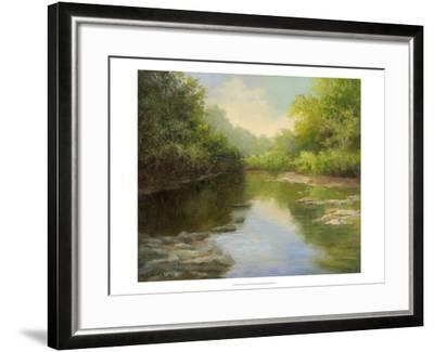 O'Bannon Summer Creek-Mary Jean Weber-Framed Art Print