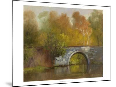 The Bridge-Mary Jean Weber-Mounted Art Print