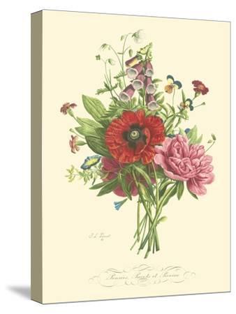 Plentiful Bouquet II-T^L^ Prevost-Stretched Canvas Print