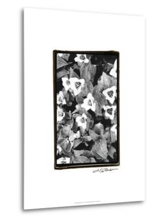 Springtime Garden I-Laura Denardo-Metal Print