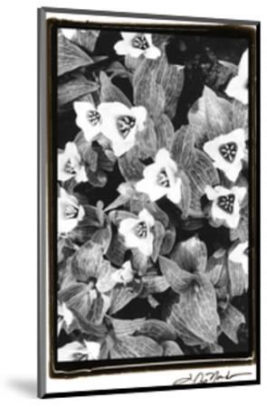Springtime Garden I-Laura Denardo-Mounted Art Print