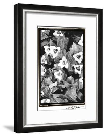 Springtime Garden I-Laura Denardo-Framed Art Print