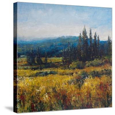 Pacific Northwest I-Tim O'toole-Stretched Canvas Print