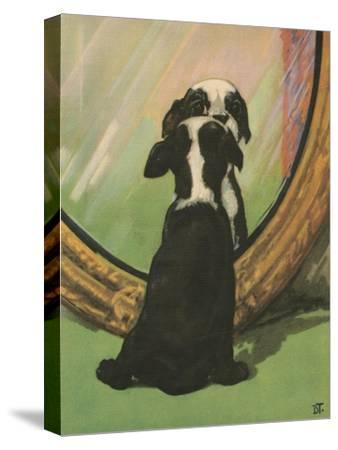 Terrier Trouble IV--Stretched Canvas Print